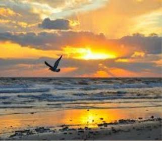 spiritual living creates a better life