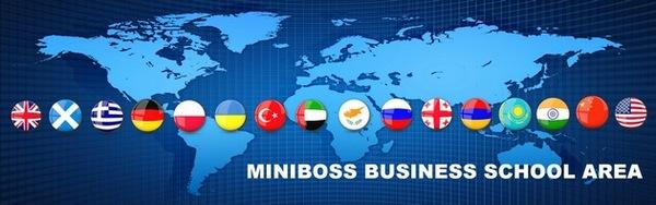 Глобальная сеть MINIBOSS