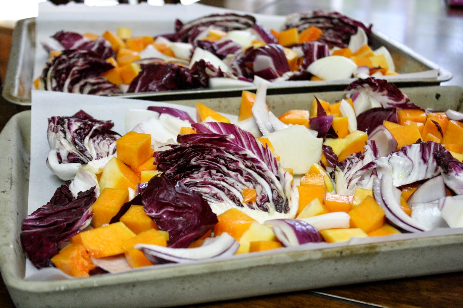Toss the squash, onion and radicchio wedges in olive oil and salt them ...