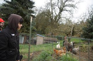 Marissa Paternoster Farm to Artist