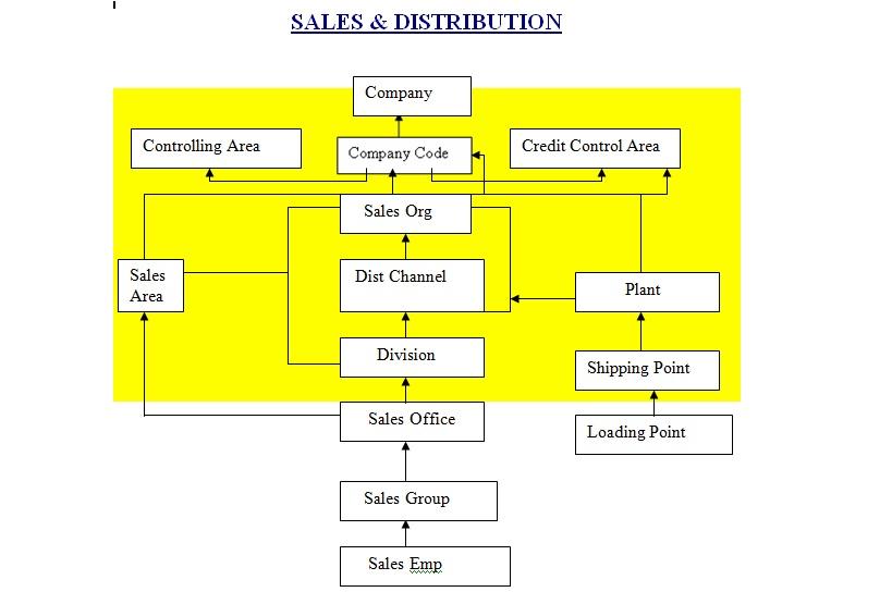 Organization structure Sales & Distribution  SD