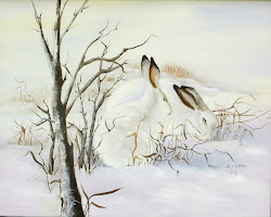 SNOW HARES