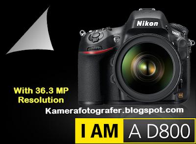 Spesifikasi dan Harga Kamera Nikon D800 Tahun 2015
