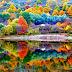 Hình Nền Đẹp - Beautiful wallpapers - Hình Nền Đẹp - Sắc Màu Thiên Nhiên