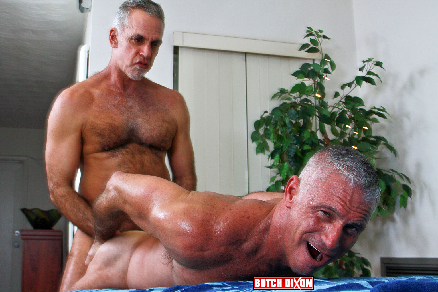 Mature Gay Bareback 7