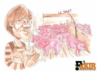 Deuxième illustration du reportage sur les élevages porcins en Bretagne pour Fakir. Guillaume Néel©