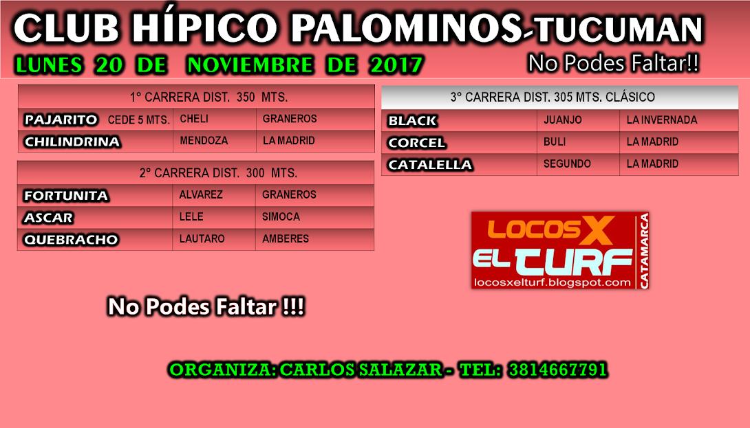 20-11-17-HIP. PALOM-PROG.