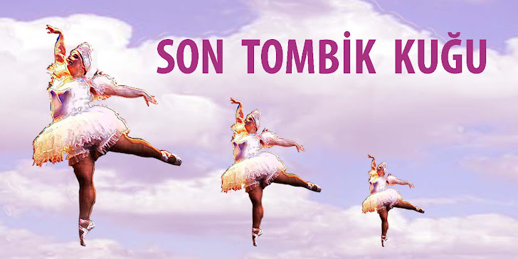 Son Tombik Kuğu