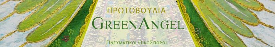 Πρωτοβουλία Green Angel