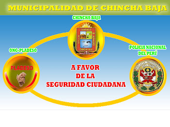 AFICHE PROMOCIONAL DE LA MUNICIPALIDAD DE CHINCHA ALTA