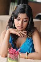 Payal, Ghosh, hot, Thigh, Show, Photo, Shoot, bikini, poolside