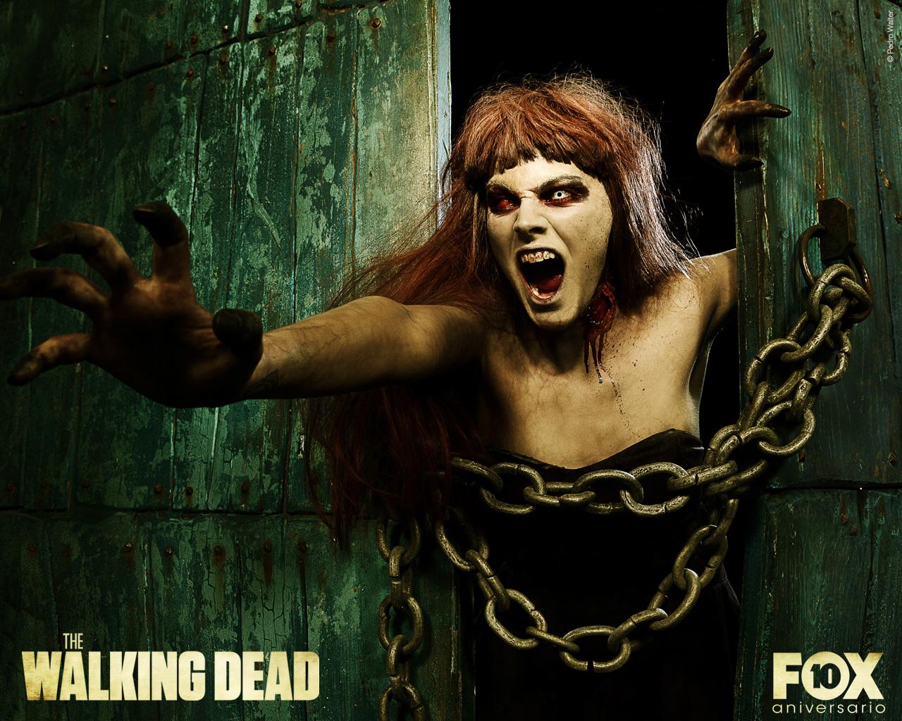 http://2.bp.blogspot.com/-eU0woGQEXzo/TpamEswXXOI/AAAAAAAAFCA/J_6FN67mDYU/s1600/the-walking-dead-amaia-salamanca.jpg