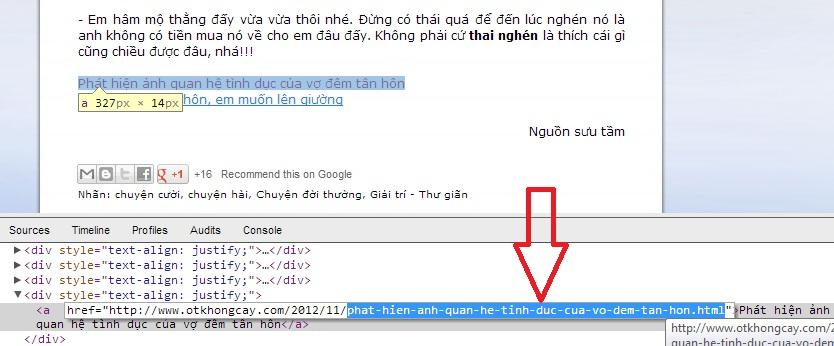 Hướng dẫn sử dụng Chia sẻ view +1, like Facebook và