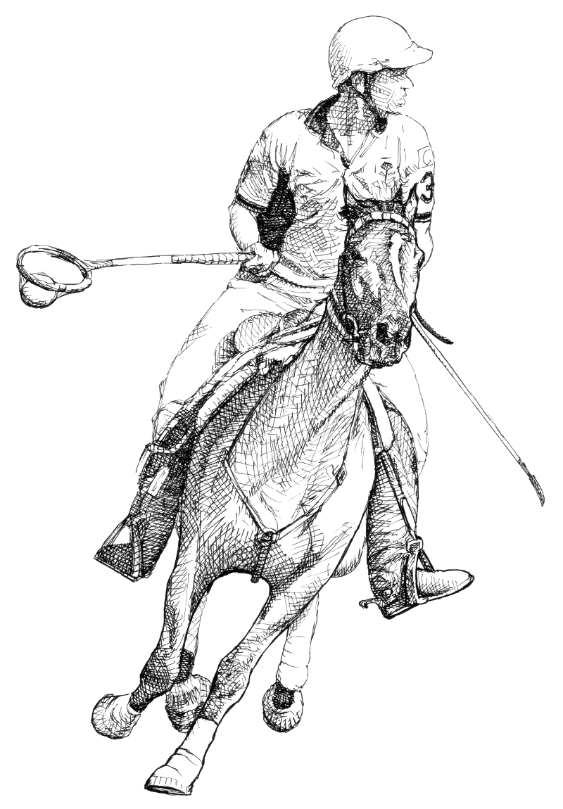 Illustration. Traditional drawing technique, sport, rider, horse