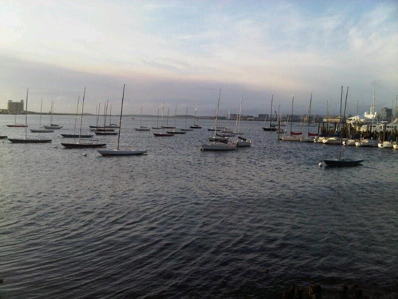 massachusetts oyster project fishing boston harbor great fun