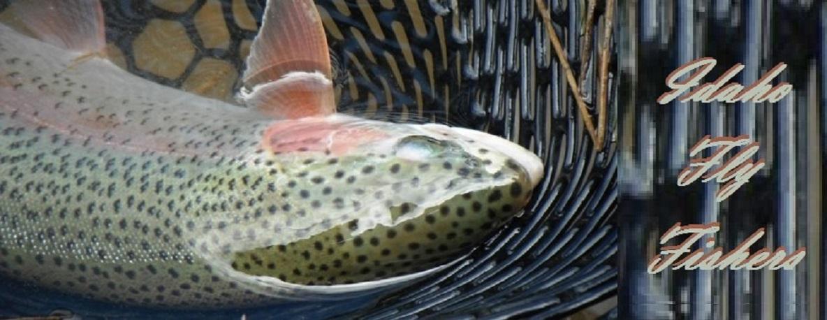 Idaho Fly Fishers | Idaho Montana Fishing | Fly Fishing Trips, Idaho