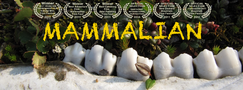 Mammalian