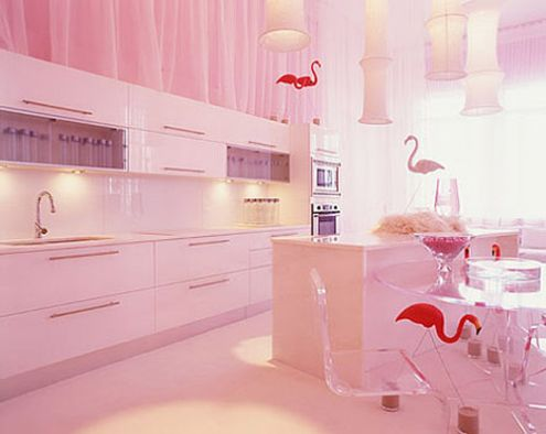 cabinets for kitchen pink kitchen cabinets pictures