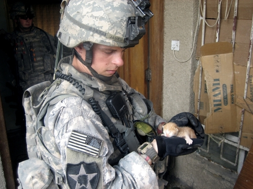 soldier holding kitty