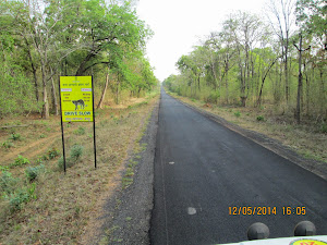 "Highway to Chandrapur that passes through ""Buffer Zone""of Tiger reserve."