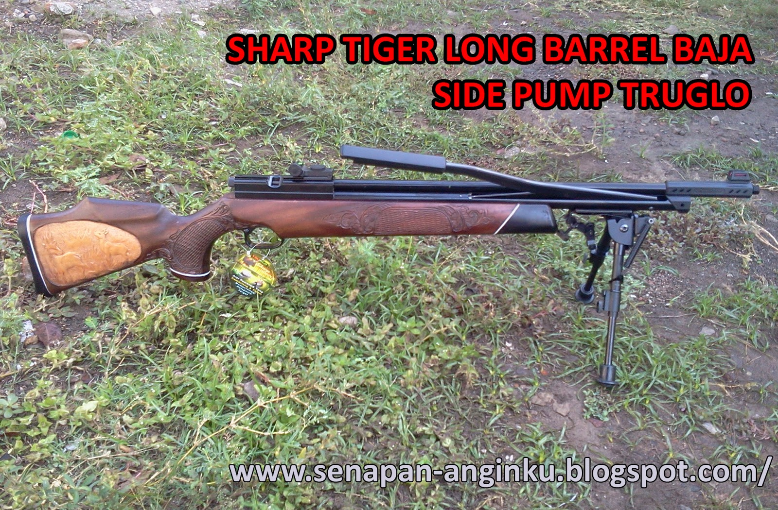 Sharp Tiger Long Barrel Baja Side Pump Truglo