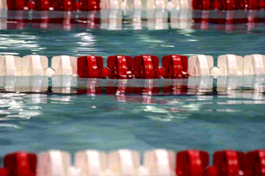 Gll Better Focus On Swimming