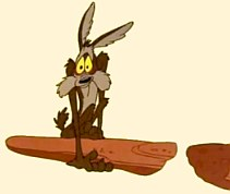 Wile E. Coyote: Gravity Lessons