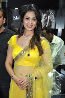 Anjana Sukhani – Hot in Transparent Yellow Saree