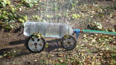 Creative idea for the garden