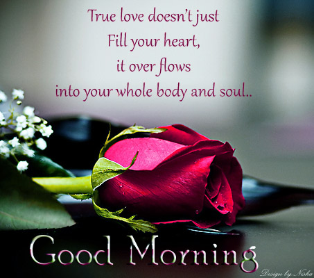 Love greetings, creative arts, Emotional greetings: True love quotes with good morning wallpaper ...