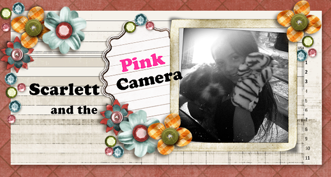 Scarlett And The Pink Camera