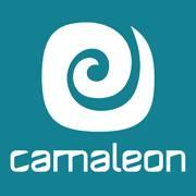 http://www.camaleonstick.com/