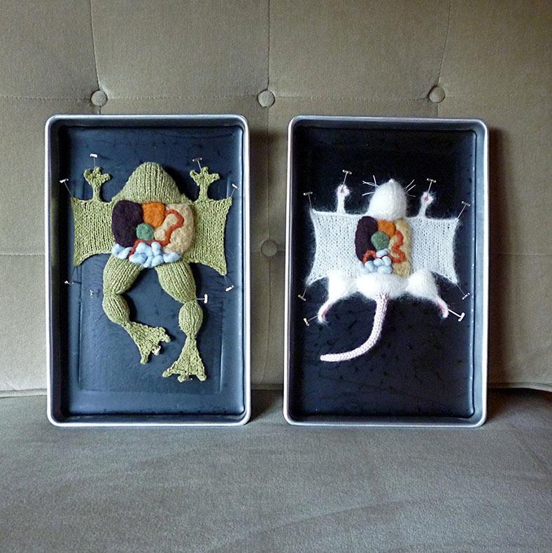 Aprende anatomía (sin dañar nada) con las criaturas de punto