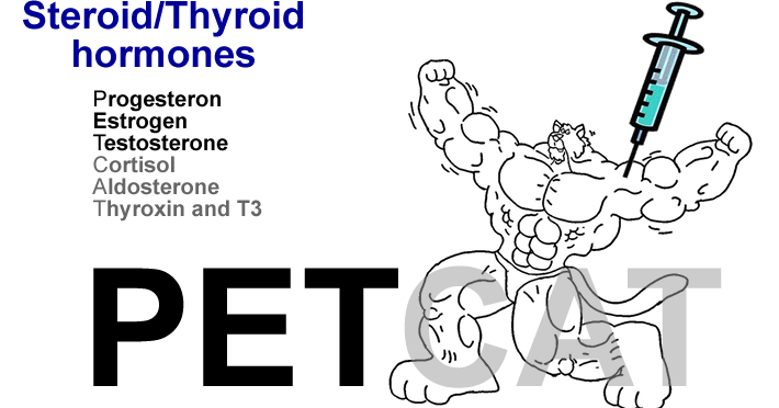steroid/thyroid hormone mechanism