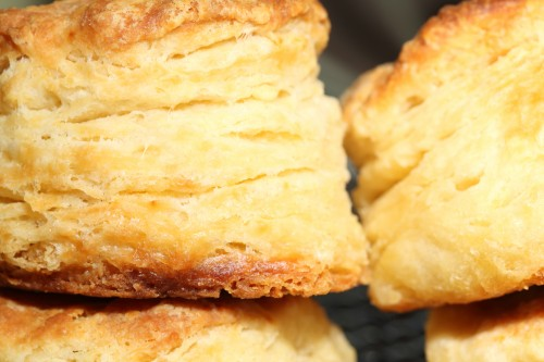 The Domestic Curator: Absolutely THE BEST Buttermilk Biscuits