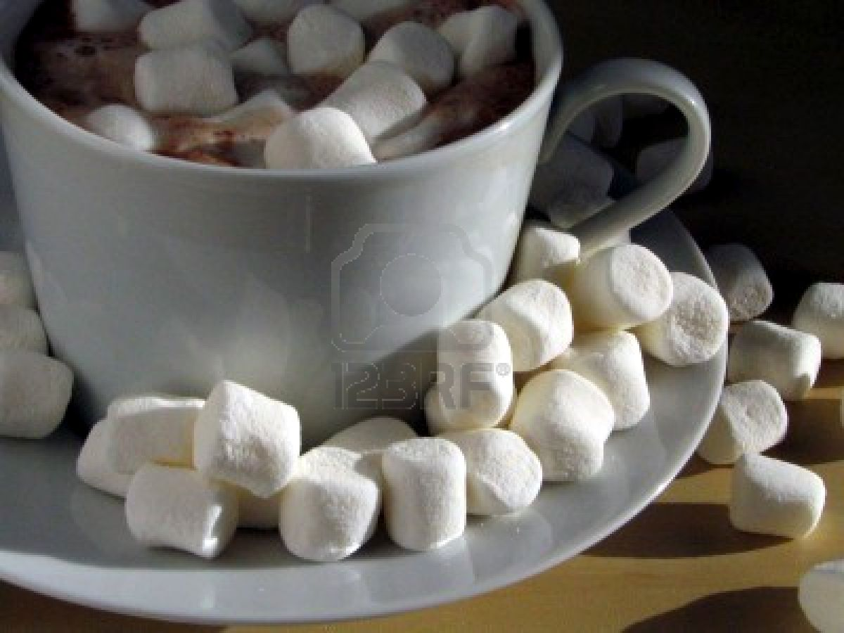 special made hot chocolate with marshmallow