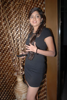 Beautiful Telugu Actress Poonam Kaur in Black Dress at an Event