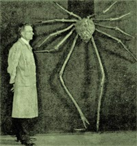 Scientist and giant spider. of course.