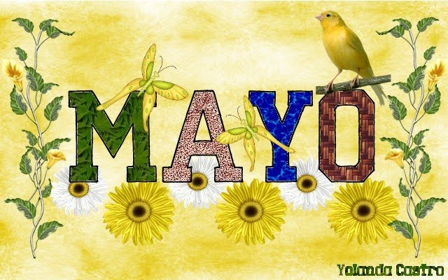 BIENVENIDO, MAYO.  MES DE LAS FLORES. Imagen+feliz+mes+de+mayo+13