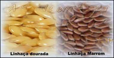 Diferenças entre as Sementes de linhaça marrom e dourada.