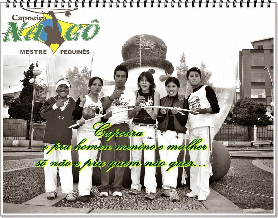 estilo capoeira