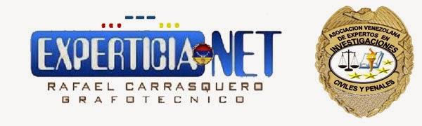 experticia.net
