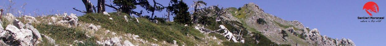 La traversata di Serra delle Ciavole dalla cresta Sud Est