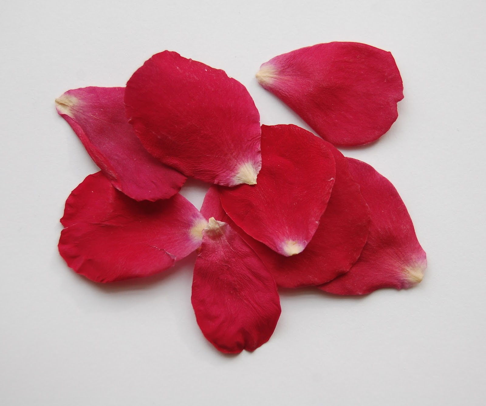 The Confetti Blog Red Rose Petals for St Valentine s Day