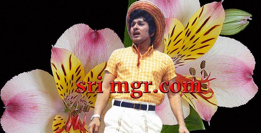 M    G    R