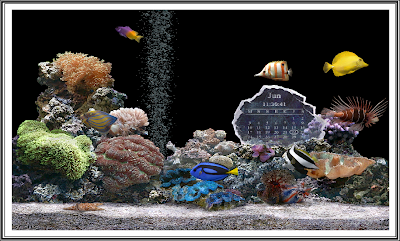 Free Download! Marine Aquarium Screen Sever