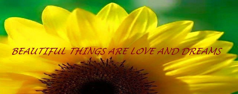 Beautiful Things are Love and Dreams