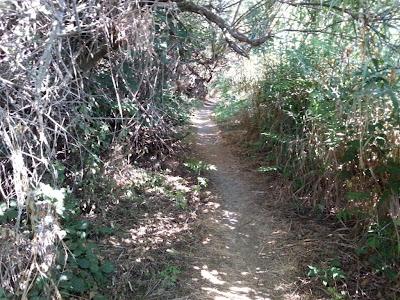 sentiero sul lungomare di Numana