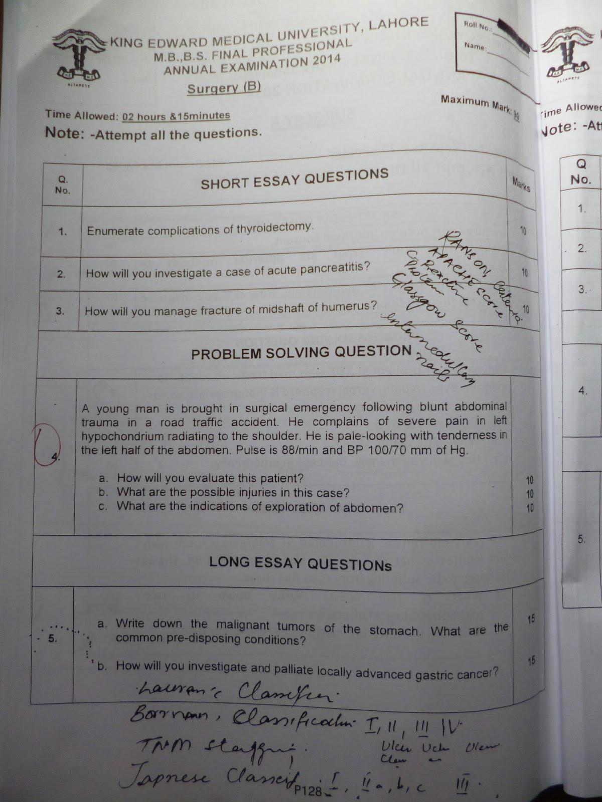 professional resume editor service for school essay transfer