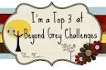 Beyond Grey Challenge Top 3